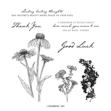 Nature's Harvest Cling Stamp Set (english)