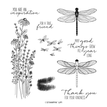 Dragonfly Garden Stamp Set By Stampin Up!