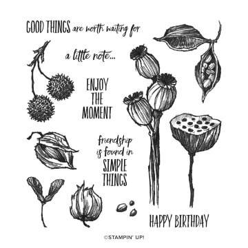 Enjoy The Moment Stamp Set From Stampin' Up!