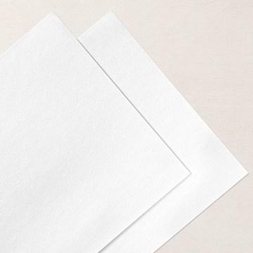 Snowy White 12 X 12 (30.5 X 30.5 Cm) Velvet Sheets