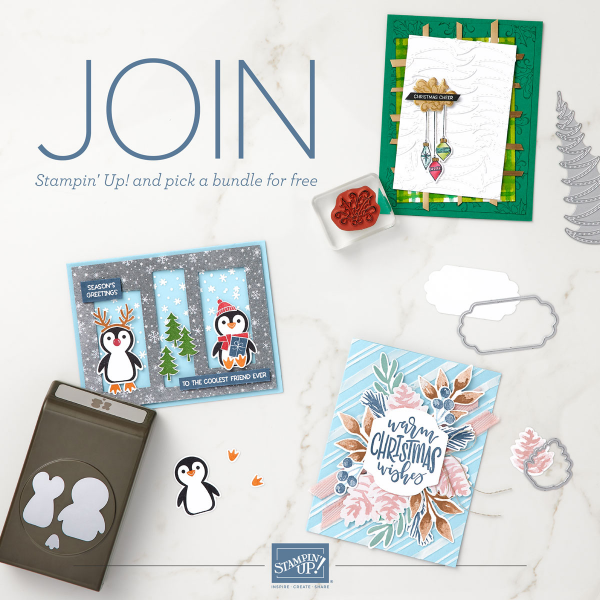 Now is a fabulous time to join Stampin' Up! From now to Sept 30th you'll get a bonus of even MORE FREE products in you customizable Starter Kit.